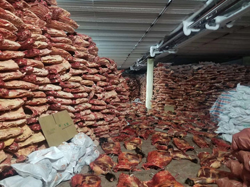 meat cold storage,meat cold room